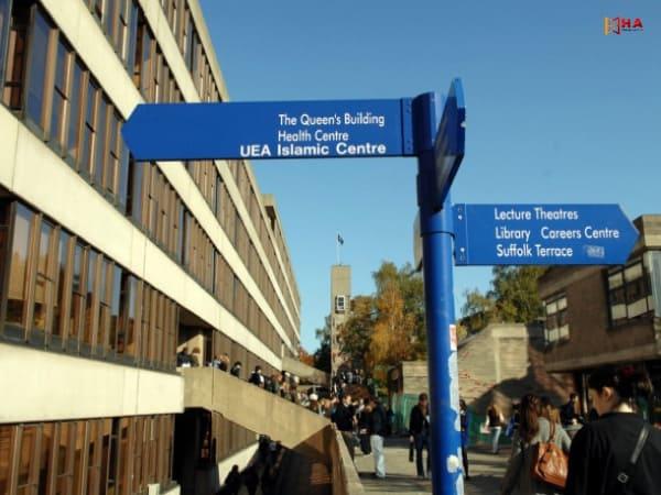 cơ cấu khoa trường đại học University of east Anglia