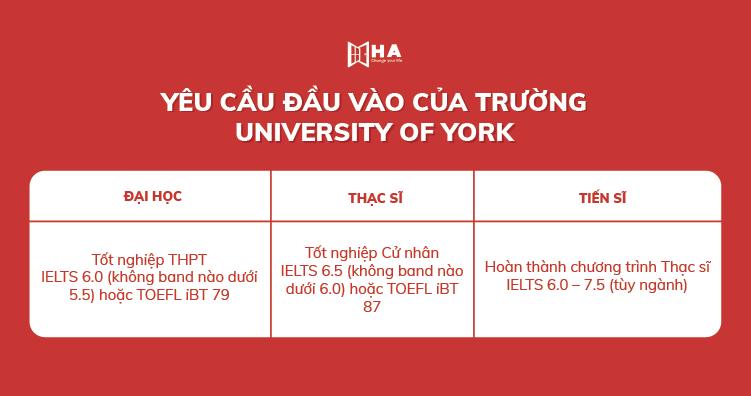 Yêu cầu đầu vào của trường Đại học York