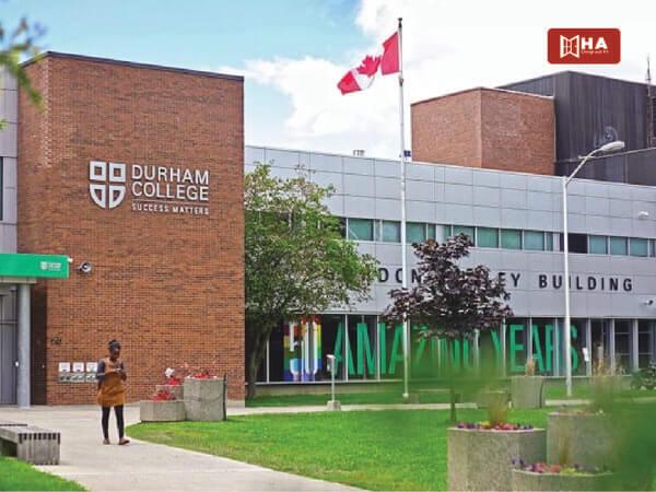 Giới thiệu chung trường Cao đẳng Durham