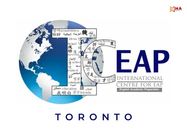 Các trường đối tác của ICEAP