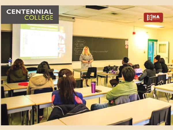 Chương trình đào tạo trường Centennial College