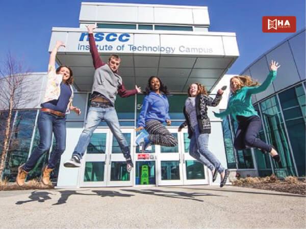 Chương trình đào tạo tại NSCC