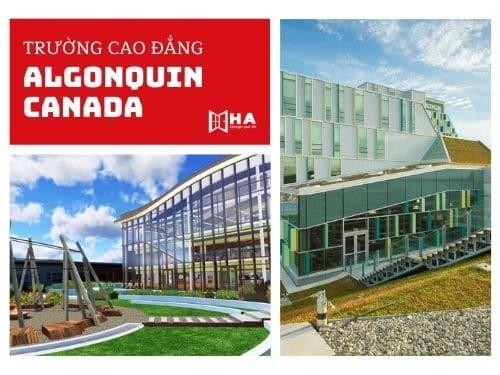 Trường cao đẳng Algonquin Canada