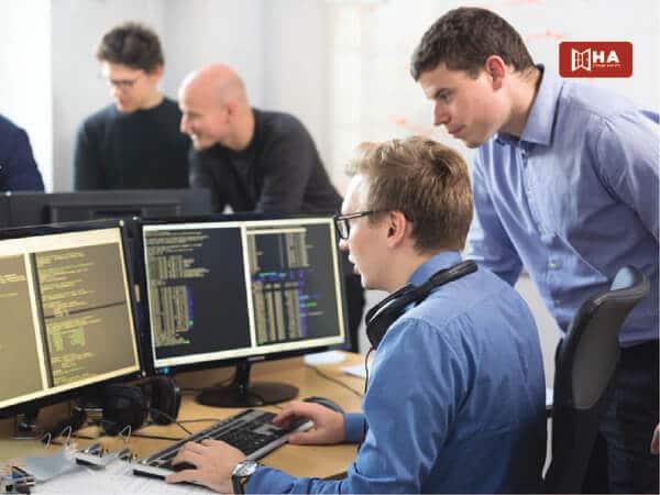 Cơ hội nghề nghiệp khi học công nghệ thông tin tại Hà Lan