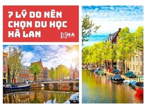 7 Lý do tại sao nên chọn du học Hà Lan