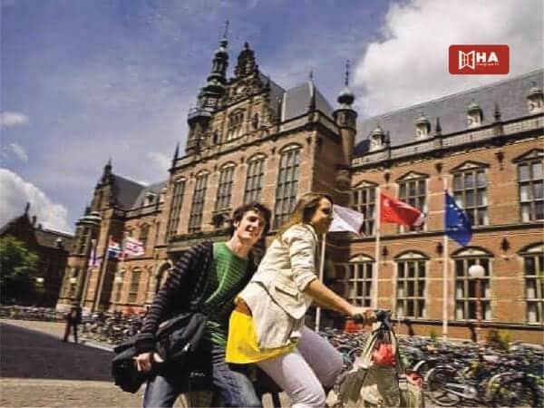 Lộ trình du học Hà Lan sau khi Tốt nghiệp THPT