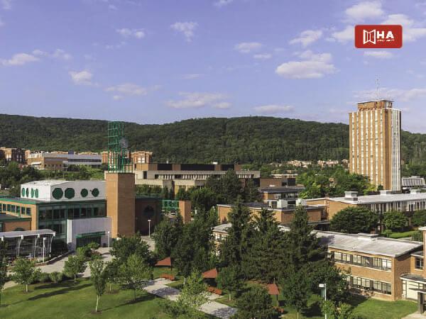 Đại học Binghamton trường đại học ở mỹ có học phí thấp