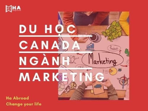 Du học Canada ngành Marketing và cơ hội việc làm rộng mở