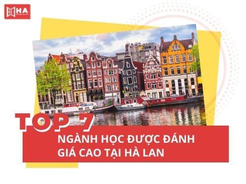 TOP 7 ngành học được đánh giá cao nên học tại Hà Lan