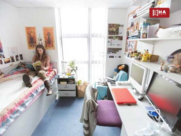 Sống trong căn hộ chia chung ngoài khu học xá