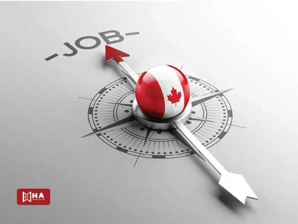 Cơ hội tìm việc cao sau khi tốt nghiệp Cao đẳng tại Canada