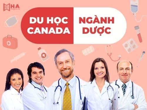 Du học Canada ngành dược - Cơ hội định cư lớn cho du học sinh