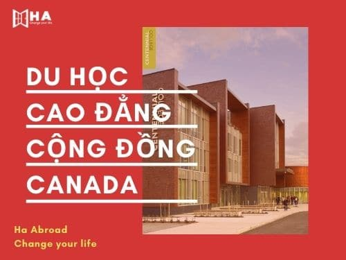 Lợi thế khi du học Cao đẳng Canada 2021 cực HOT