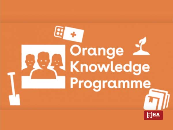 Học bổng Hà Lan Orange Knowledge Program