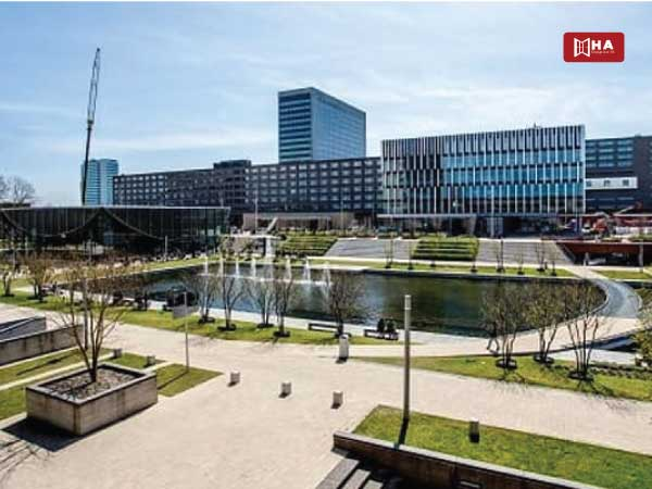 xếp hạng các trường Đại học tại Hà Lan Đại học Erasmus Rotterdam
