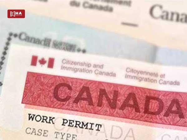 Gia hạn giấy phép làm việc cho du học sinh Canada thêm 18 tháng mùa Covid-19