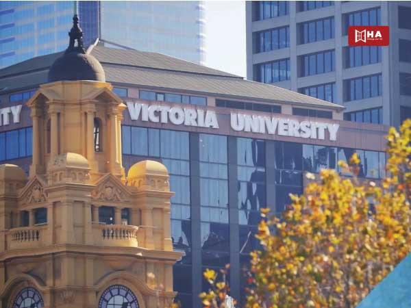 Đại học Victoria University (VU) các trường đại học ở melbourne úc