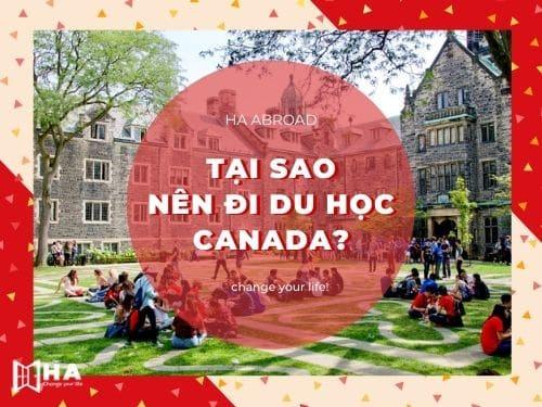 Tại sao nên đi du học Canada?