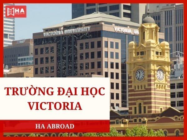Trường đại học Victoria - Đại học danh giá tại Melbourne