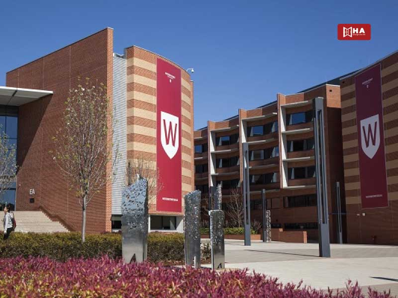 Trường Western Sydney University các trường đại học ở sydney úc