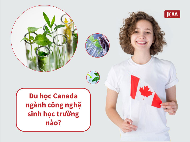 Danh sách các trường đào tạo ngành Công nghệ Sinh học tại Canada