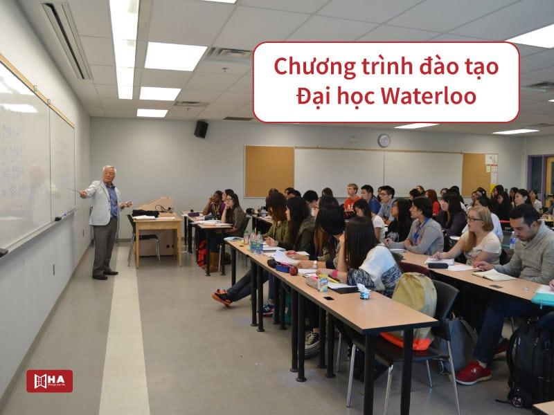Chương trình đào tạo Đại học Waterloo