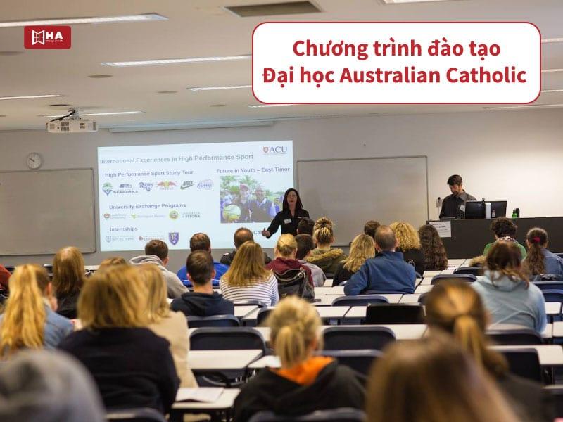 Chương trình đào tạo trường ACU Úc