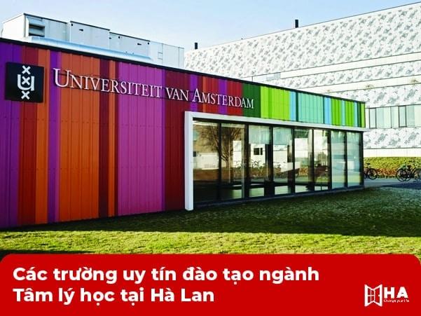 Các trường uy tín đào tạo ngành Tâm lý học tại Hà Lan